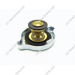 Water radiator cap 1.2 Bars suitable